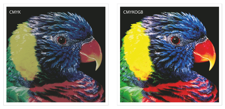 Multicolor (CMYKOGB) vs regular CMYK